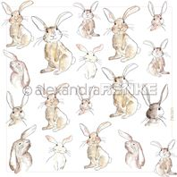 Papier - all rabbits with frame