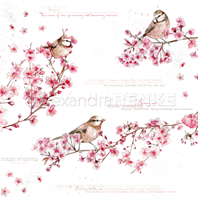 Papier - Birds in Cherry blossoms