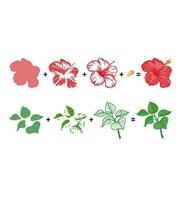 3D Clear Stamp - Flowers