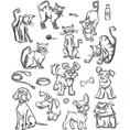 Cling Stamp - Mini Crazy Cats&Dogs