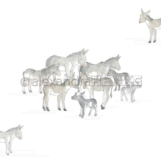 Papier - School party - Group of donkeys