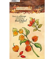 Clear stamp - Wonderful Autumn - n°481