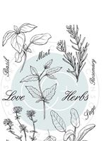 Clear stamps - The Herbarium - Herbs