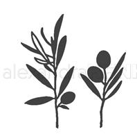 Die - Olive branches