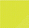 Papier - Basics - Lime Dot