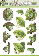 Papier 3D - Friendly Frogs - Tree frogs